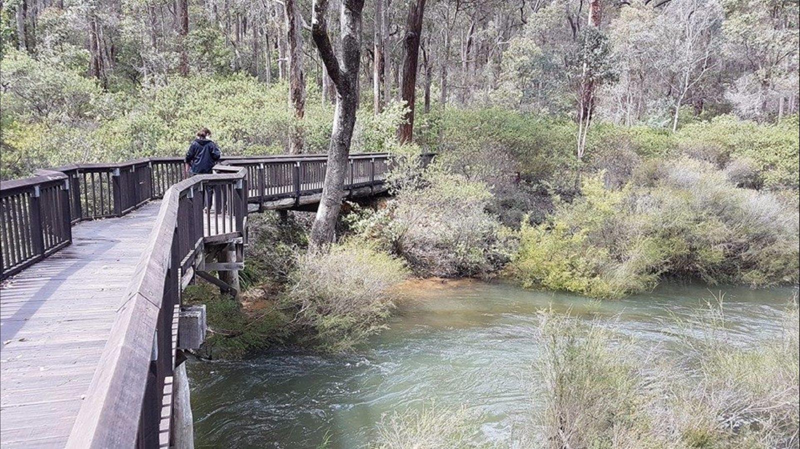 Fern Gulley Retreat, Nannup, Western Australia