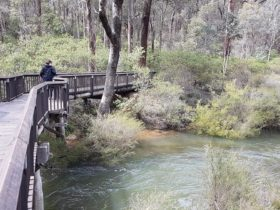 Fern Gulley Retreat, Nannup, Western Australia