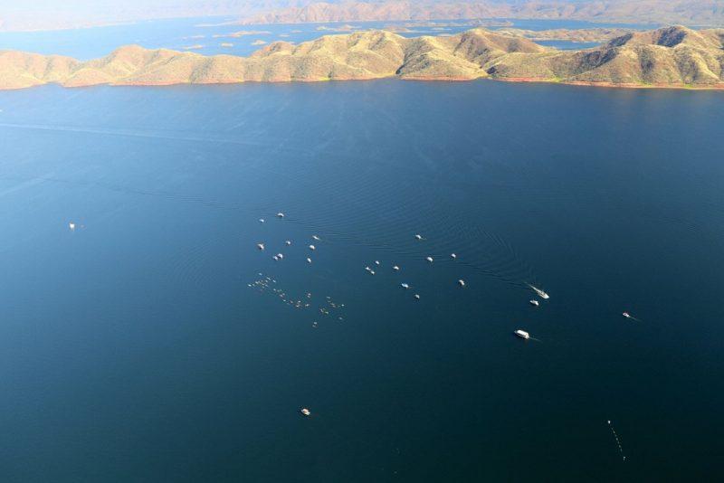 First National Kimberley Lake Argyle Swim, Kununurra, Western Australia
