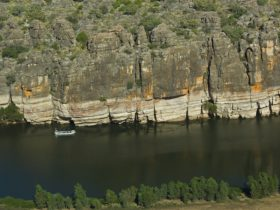 Fitzroy River, Fitzroy Crossing, Western Australia