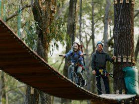 Forest Adventures South West, Busselton, Western Australia