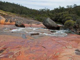 FR Berry Reserve, Gidgegannup, Western Australia