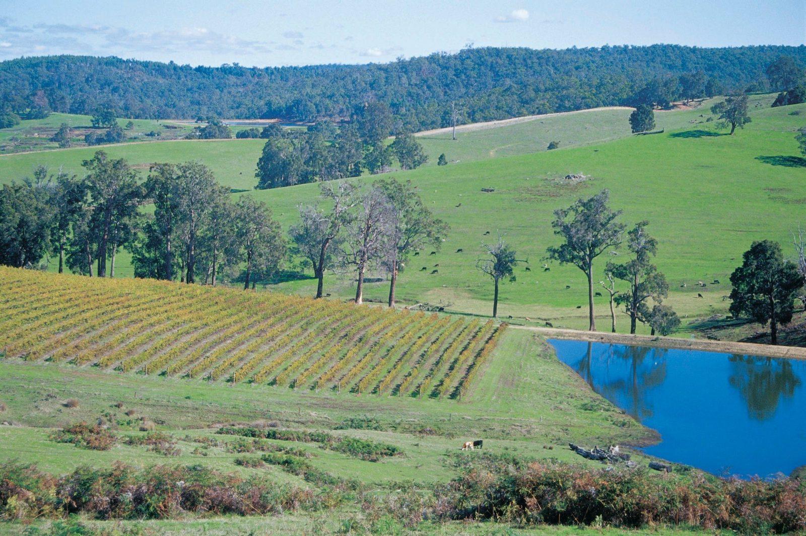 Geographe Alternative Wine Trail, Bunbury, Western Australia