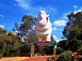 Giant Ram Tourist Park, Wagin, Western Australia
