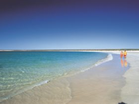 Gnaraloo Bay, Carnarvon, Western Australia