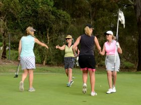 Golf & Tours, Perth, Western Australia