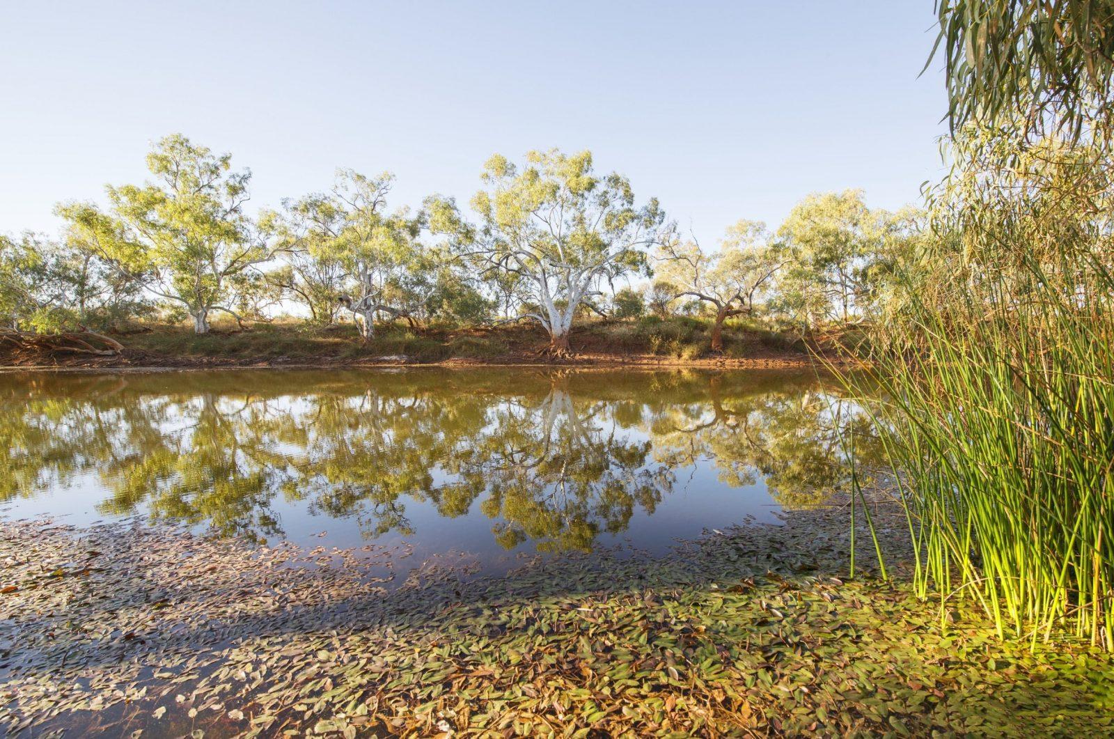 Goolinee - Cattle Pool, Mt Augustus, Western Australia