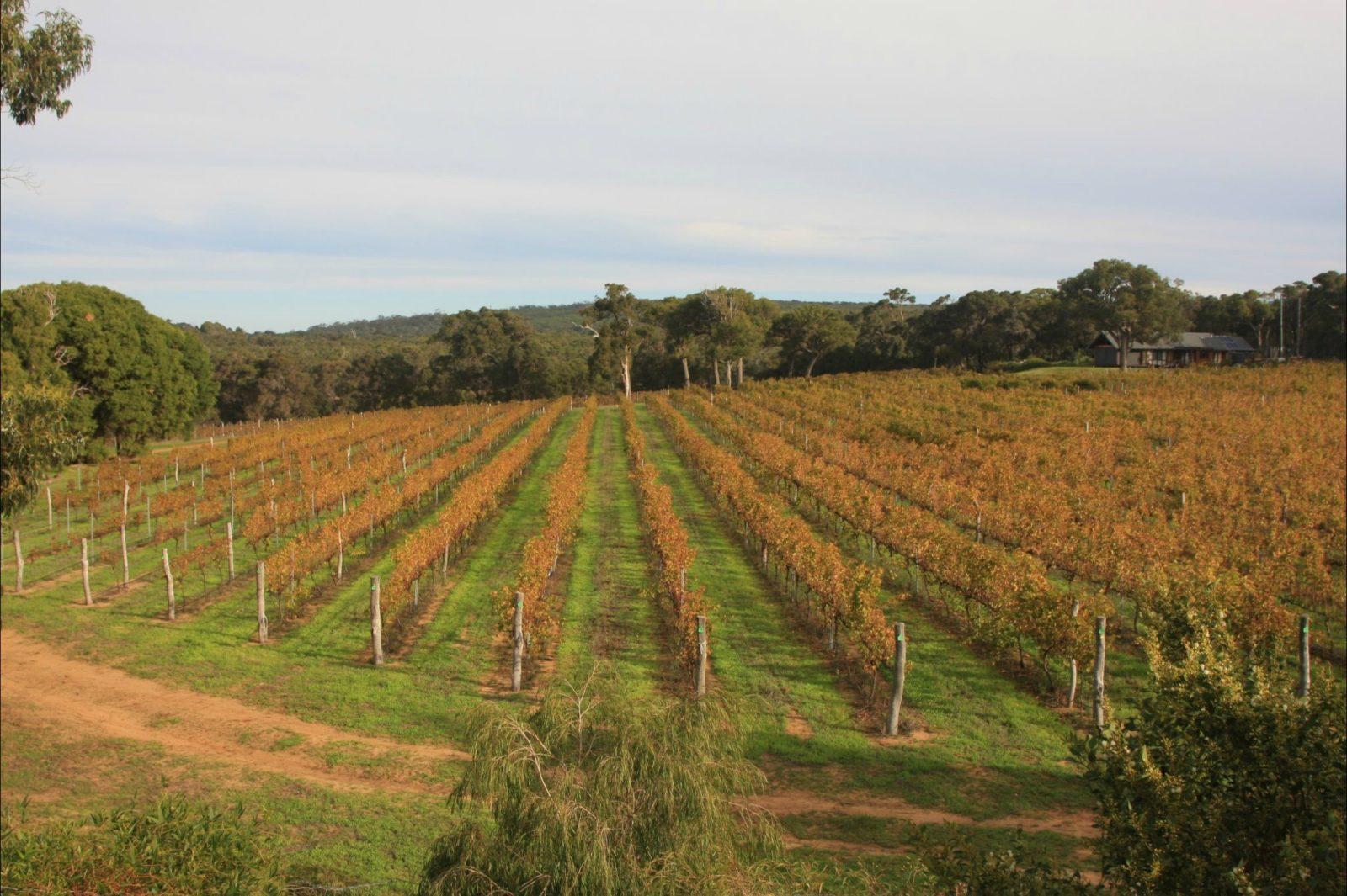 Grace Farm, Gracetown, Western Australia