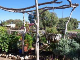 Greenough Museum and Gardens, Greenough, Western Australia