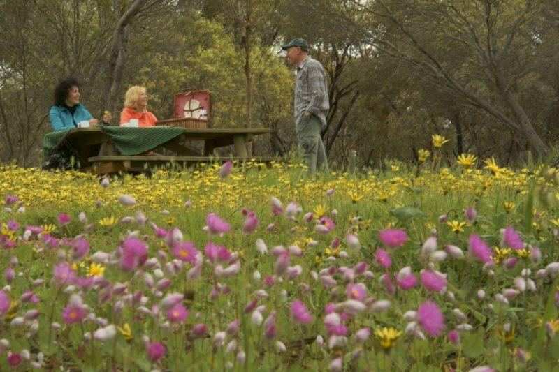 Gwambygine Park, York, Western Australia