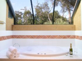 Harmony Forest Accommodation and Vineyard, Margaret River, Western Australia