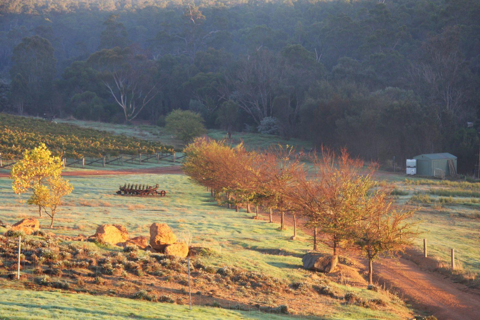 Harris River Estate, Collie, Western Australia