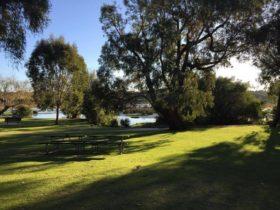 Henry White Yanchep Campground, Yanchep, Western Australia