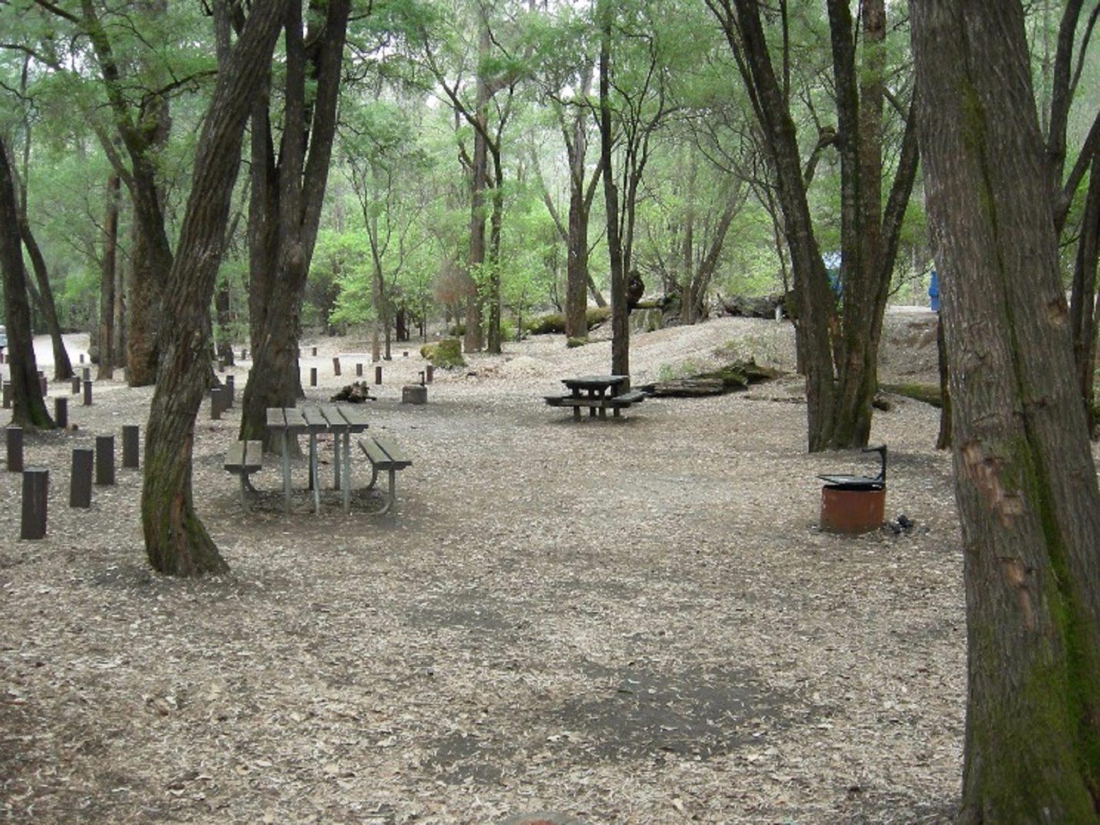 Honeymoon Pool Camp, Wellington National Park