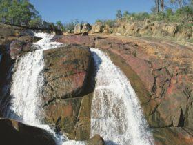 Hovea, Western Australia