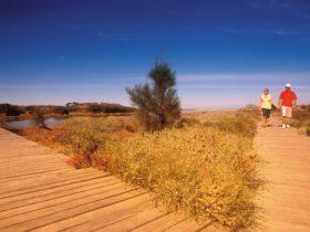 Irwin River Nature Trail, Dongara, Western Australia