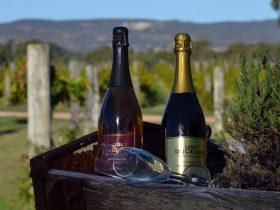 John Kosovich Wines, Baskerville, Western Australia