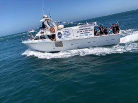 Jurien Bay Oceanic Experience, Jurien Bay, Western Australia