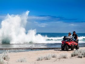 Kalbarri Wagoe Beach Quad Bike Tours, Yallabatharra, Western Australia