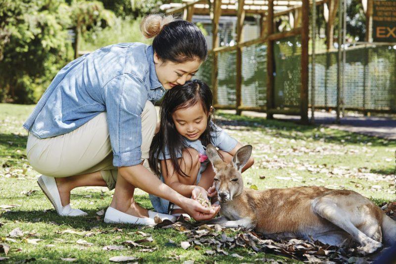 Kandu Holidays, Armadale, Western Australia