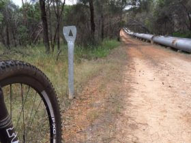 Kep Track, Mundaring Weir, Western Australia