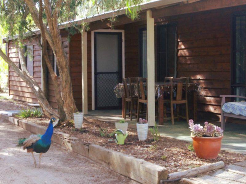 Kerriley Park Forest and Farmstay, Busselton, Western Australia