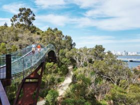 Kings Park Free Guided Walks, Perth, Western Australia