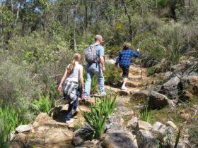 Kitty's Gorge, Serpentine National Park, Western Australia