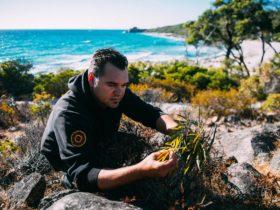Koomal Dreaming, Yallingup, Western Australia