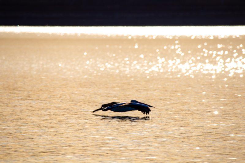 Lake Argyle Cruises, Lake Argyle, Western Australia