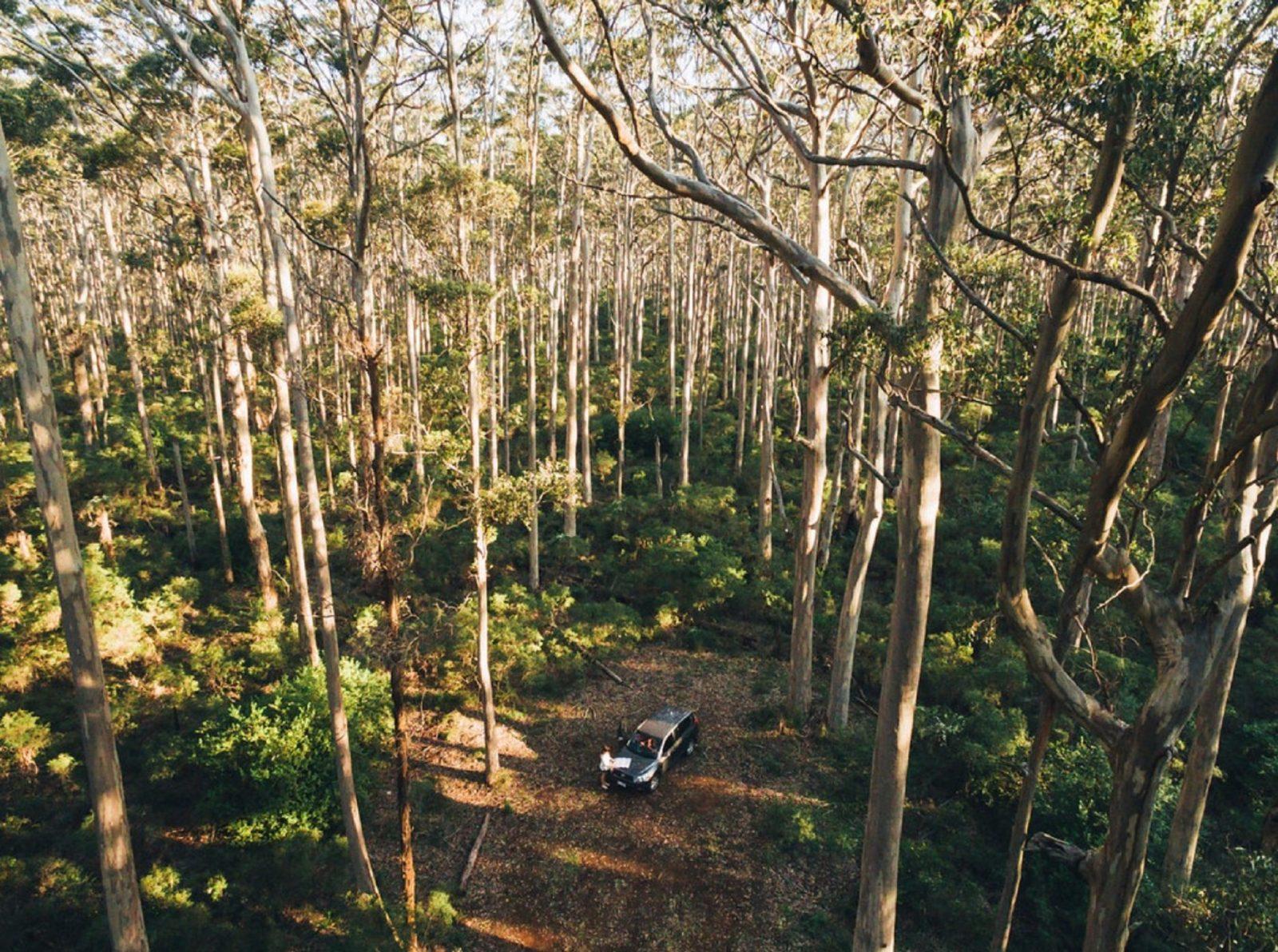 Leeuwin-Naturaliste National Park - Cowaramup, Cowaramup, Western Australia