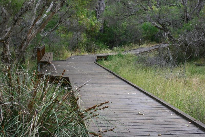 Leschenault Peninsula Conservation Park, Australind, Western Australia