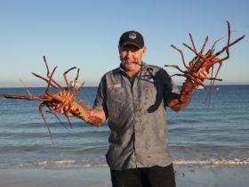 Lobster Shack, Cervantes, Western Australia