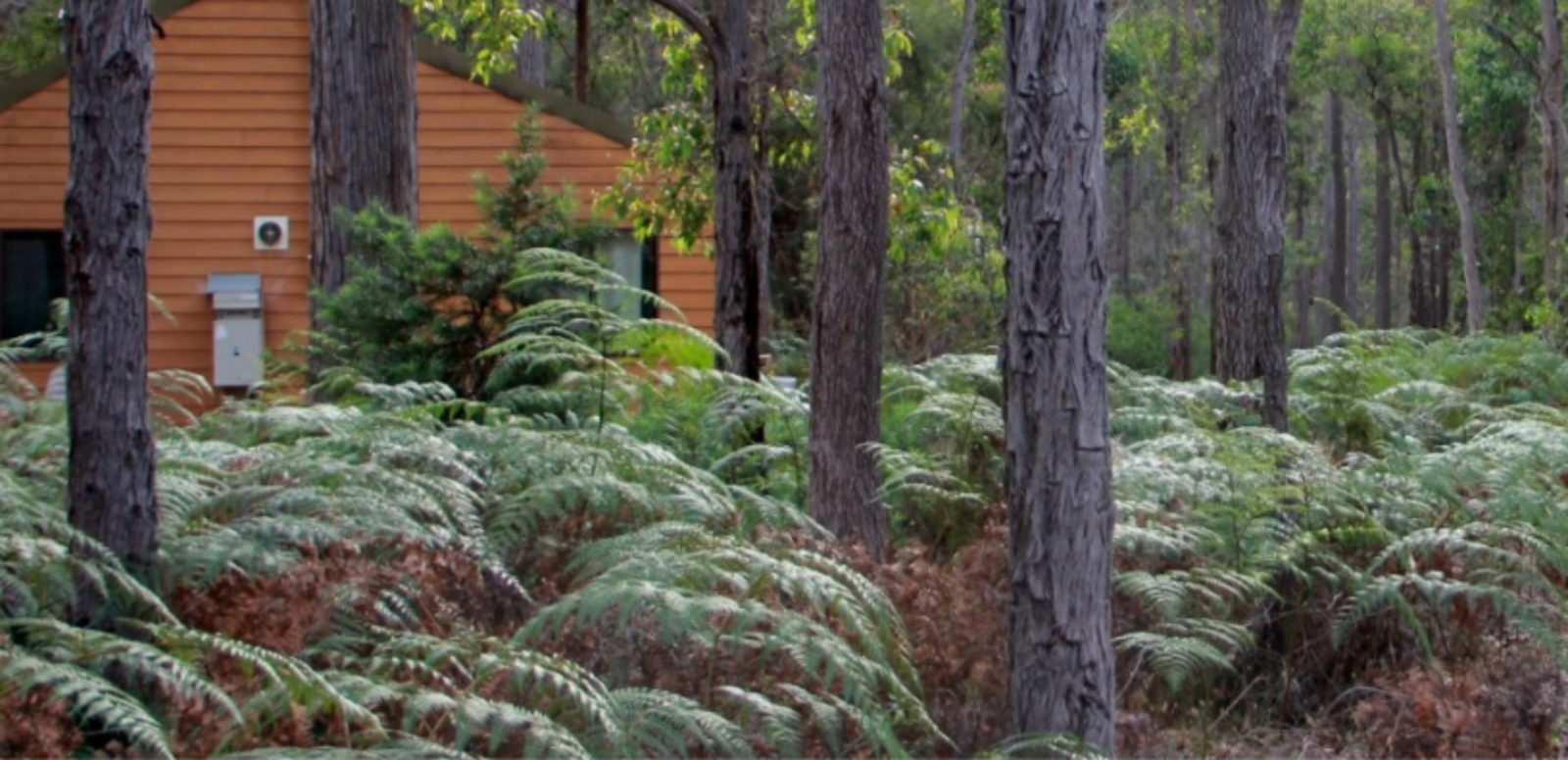 Loose Goose Chalets, Nannup, Western Australia