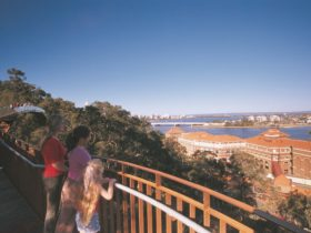 Lotterywest Federation Walkway, West Perth, Western Australia