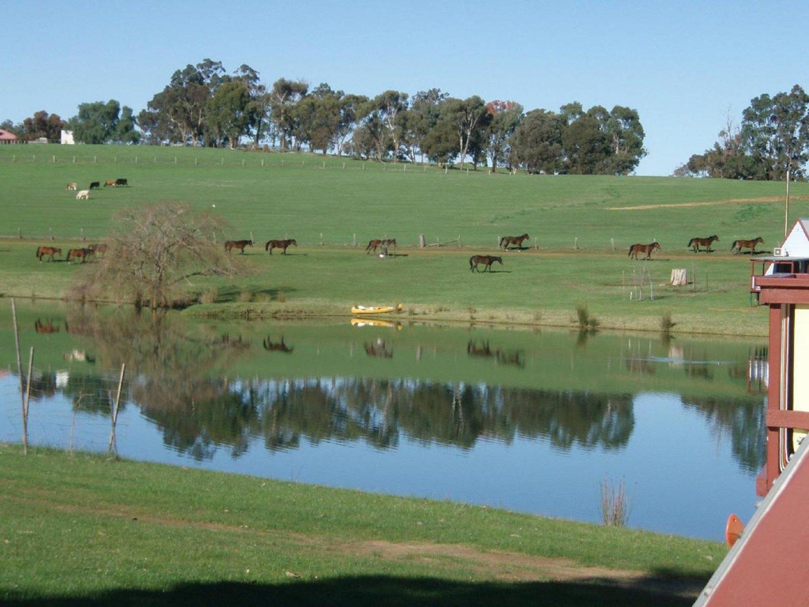 Lucieville Farm Chalets, Bridgetown, Western Australia