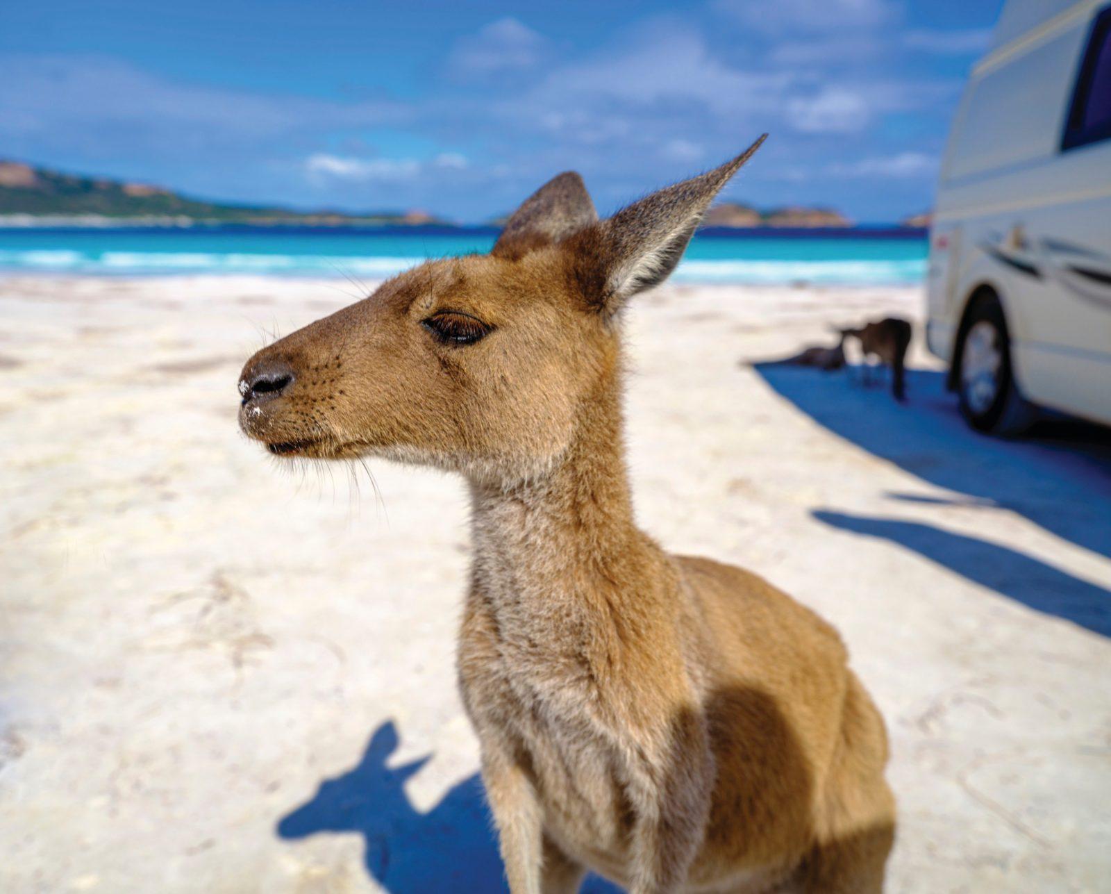 Cape Le Grand National Park , Western Australia