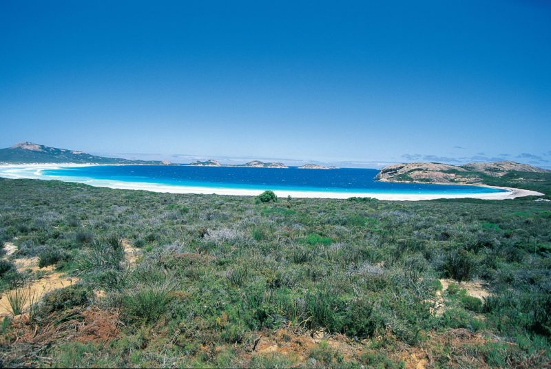 Lucky Bay Camp, Cape Le Grand National Park, Western Australia