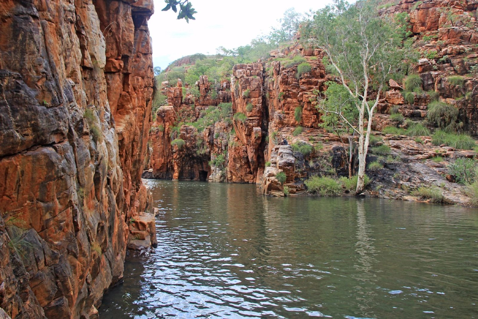 Luridjii Tours Junama Four Wheel Drive Tagalong Tours, Western Australia