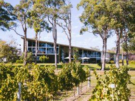 MadFish Wines Margaret River, Cowaramup, Western Australia