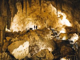 Mammoth Cave, Margaret River, Western Australia