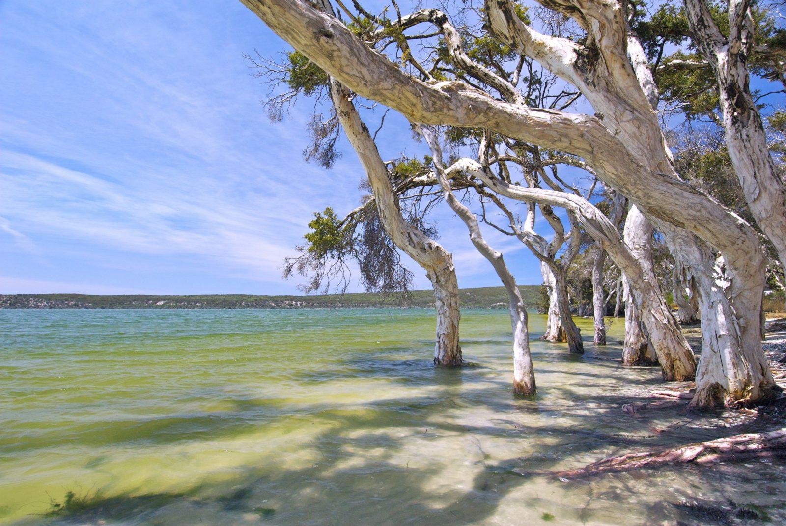 Stokes National Park, Western Australia