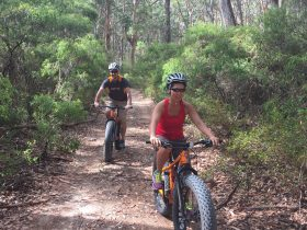Margaret River Adventure Co., Gnarabup, Western Australia