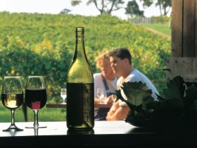 Margaret River Certified Organic and Biodynamic Wine Trail, Margaret River, Western Australia
