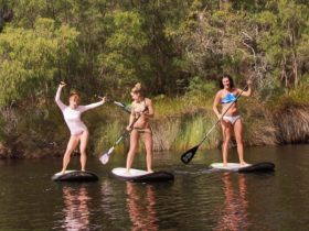 Margaret River Stand Up Paddle, Margaret River, Western Australia