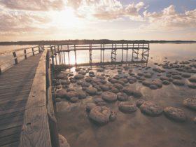 Yalgorup National Park, Western Australia