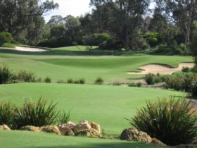 Meadow Springs Golf Club, Mandurah, Western Australia