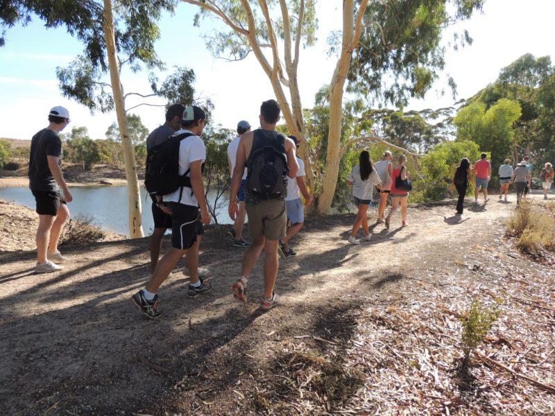 Merredin Peak Trail, Merredin, Western Australia