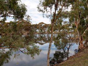Merredin Railway Dam, Merredin, Western Australia
