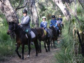 Mirravale Horse Riding School, Yallingup, Western Australia